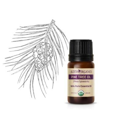 Alteya Organics Pine Tree (Pinus sylvestris) Essential Oil - organic 5ml