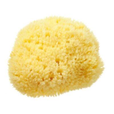 Hydréa Bahamas Grass Sponge 3.5-4