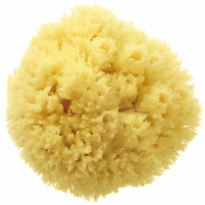 Hydréa Bahamas Grass Sponge 4.5-5