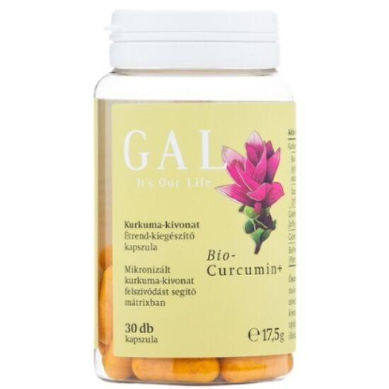 GAL Biocurcumin+ 17,5g