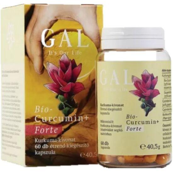 GAL Biocurcumin+ Forte 40,5g