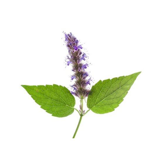 Alteya Organics Pacsuli (Pogostemon cablin) illóolaj - bio 5ml