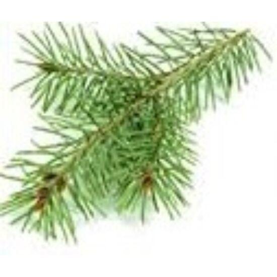 Alteya Organics Erdei fenyő (Pinus sylvestris) illóolaj - bio 5ml