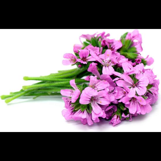 Alteya Organics Rózsageránium (Pelargonium graveolens) illóolaj - bio 10ml